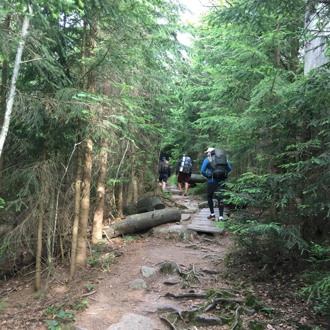 08 Krásný cestičky národního parku Šumava